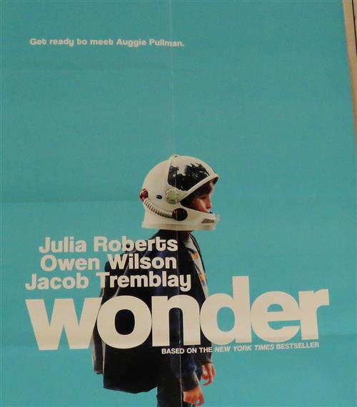 poster of the movie Wonder
