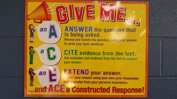 ACE - constructed response